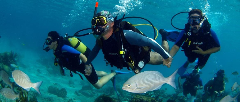 Scuba Dives in Cuba