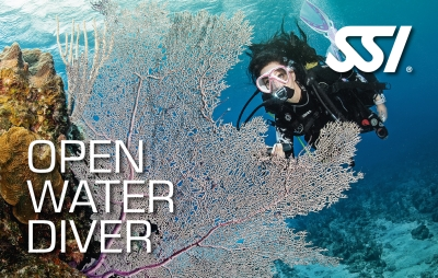 Open Water Diving SSI