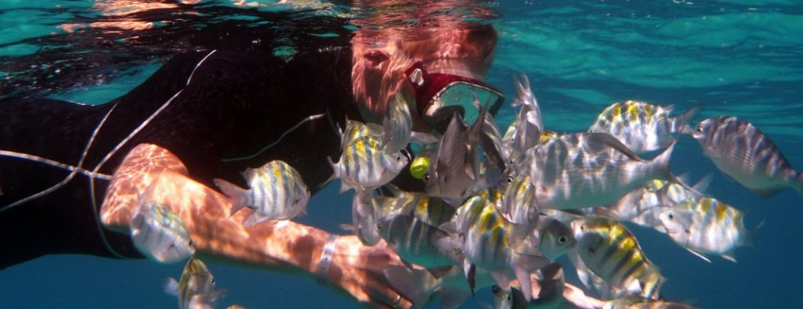 Snorkeling in Cuba - A fantasy world to everyone
